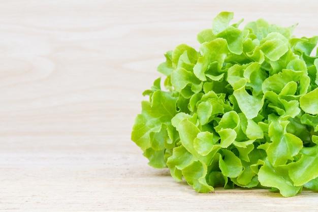 Grüner eichen-salat Kostenlose Fotos