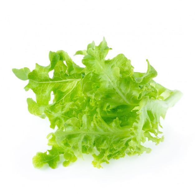 Grüner eichenblattkopfsalat lokalisiert auf einem weißen hintergrund Premium Fotos
