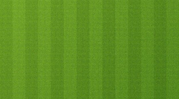 Grüner grashintergrund Premium Fotos