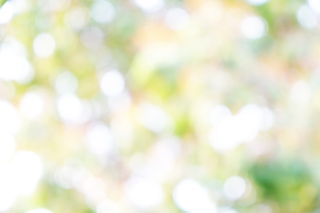 Grüner hintergrund für menschen, die grafikwerbung nutzen möchten. Premium Fotos