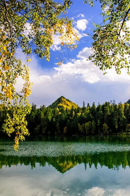 Grüner sibiriensee des gebirgherbstes mit reflexion und dem zweig einer birke Premium Fotos