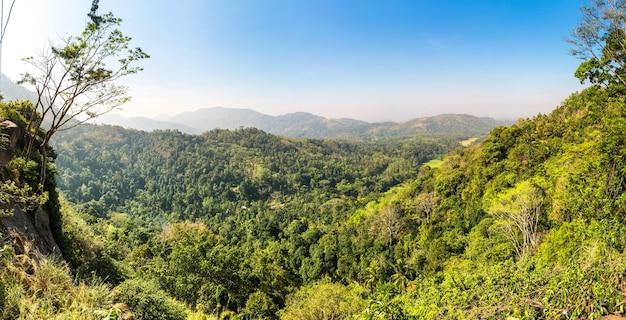 Grüner tropischer wald in einem tal auf ceylon Premium Fotos