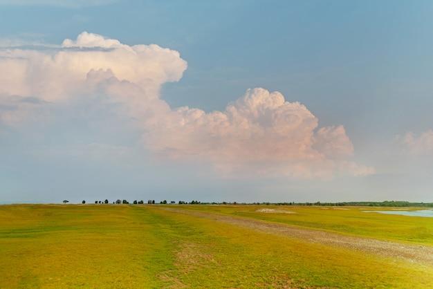 Grünes feld mit blauem himmelhintergrund Premium Fotos