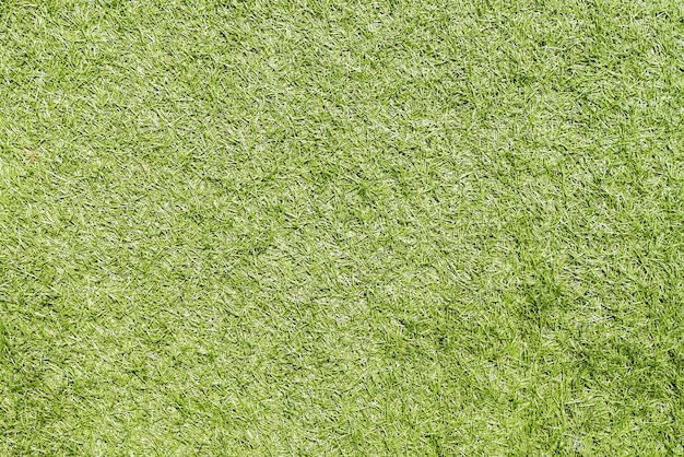 Grünes gras Kostenlose Fotos