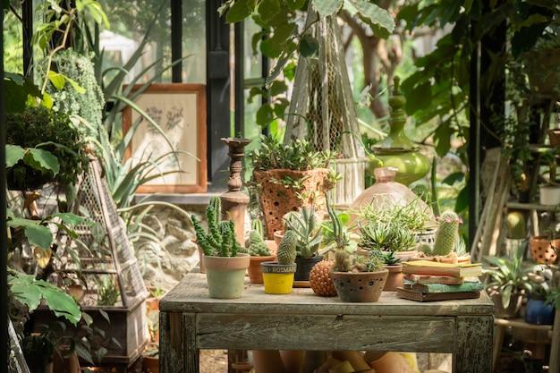 Grünes haus für den kaktus, der wachstum pflanzt. glashaus für die gartenarbeit. Premium Fotos