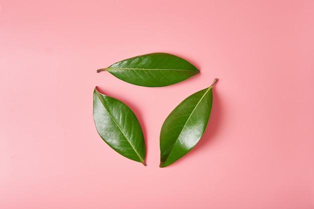 Grünes urlaublogo bereiten zeichen oder in form des wiederverwertungssymbols auf, das von den blättern der magnolie gemacht wird Premium Fotos