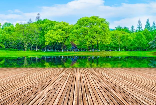 Grünes wasser landschaft sonne im freien form rasen Kostenlose Fotos
