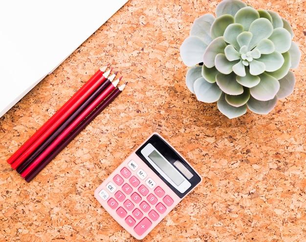 Grünpflanze nahe taschenrechner, papier und bleistiften Kostenlose Fotos