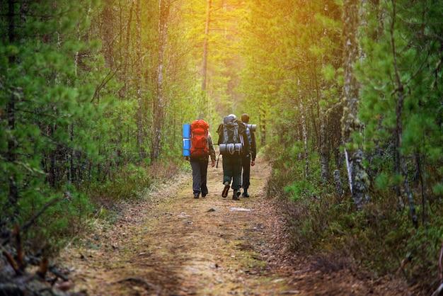 Gruppe freunde, die mit rucksäcken im sonnenuntergang von der rückseite gehen. Premium Fotos