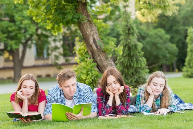 Gruppe junge studenten, die im park lernen Kostenlose Fotos