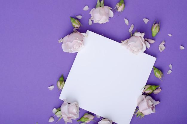 Grußkartenschablone mit schönen leichten lila farbrosen, -blumenblättern und -weißkarte für text. Premium Fotos