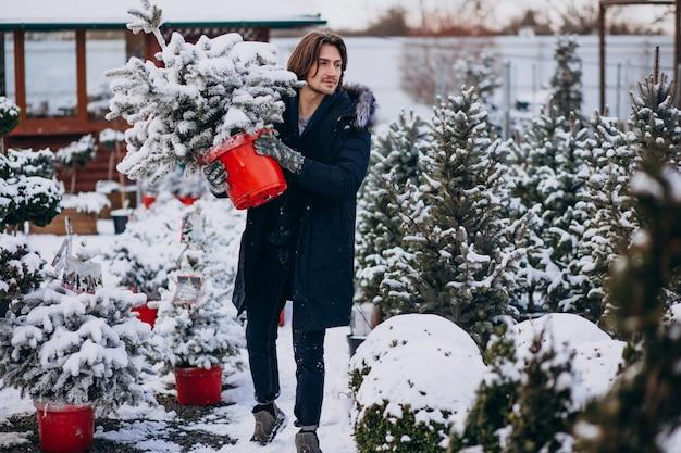 Gut aussehender mann, der einen weihnachtsbaum wählt Kostenlose Fotos
