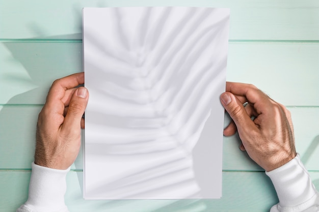 Hände, die ein papier und einen schatten von blättern halten Kostenlose Fotos