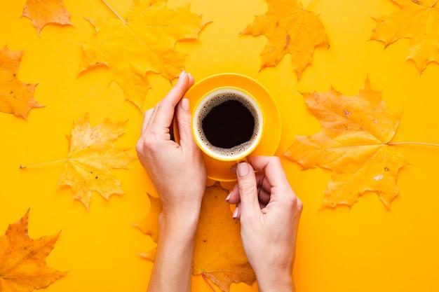 Hände, die tasse kaffee nahe bei blättern halten Kostenlose Fotos