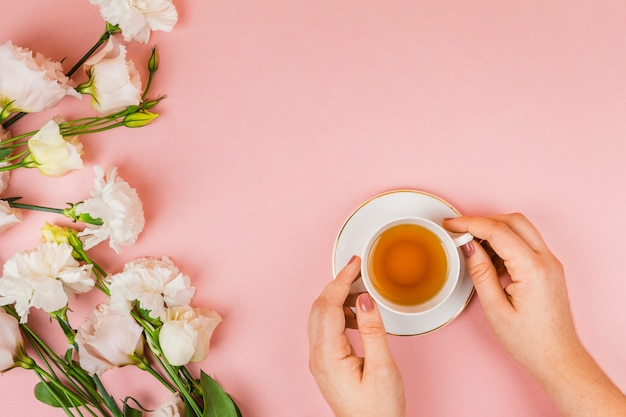 Hände halten teetasse Kostenlose Fotos