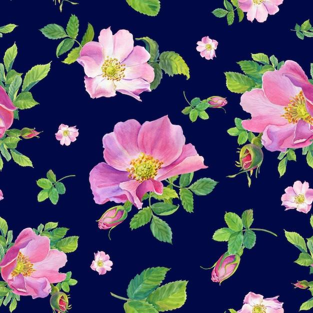 Hagebutte. aquarell wilde rosenblumen auf einem dunkelblauen hintergrund. illustration. Premium Fotos