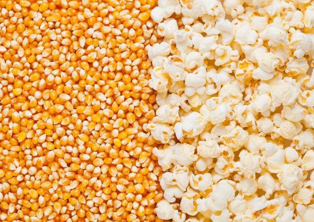 Halbes plattenmakro der rohen goldenen zuckermais- und popcornsamen Premium Fotos