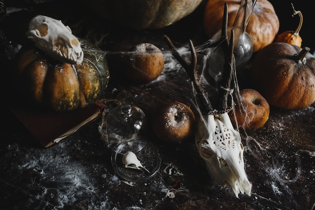 Halloween-dekor alte kürbisse, granatäpfel, äpfel Kostenlose Fotos