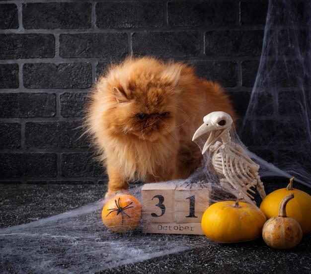 Halloween-hintergrund mit hölzernem kalender Premium Fotos