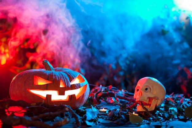 Halloween-kürbis in einem mystischen wald nachts. Premium Fotos