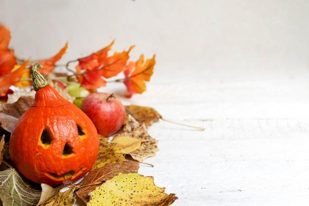 Halloween-kürbis und herbstlaub auf weißem hintergrund Premium Fotos