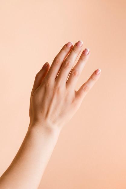Hand der manikürten frau auf hellem orange hintergrund Kostenlose Fotos