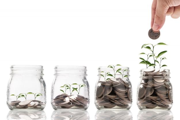Hand halten und münze setzen, um glas mit pflanzenglühen und wachstum auf münzen zu retten. Premium Fotos