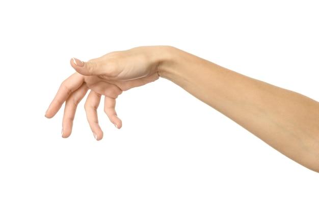 Hand pflücken, halten, greifen oder greifen. frauenhand mit französischer maniküre gestikuliert lokalisiert auf weißer wand. teil der serie Premium Fotos