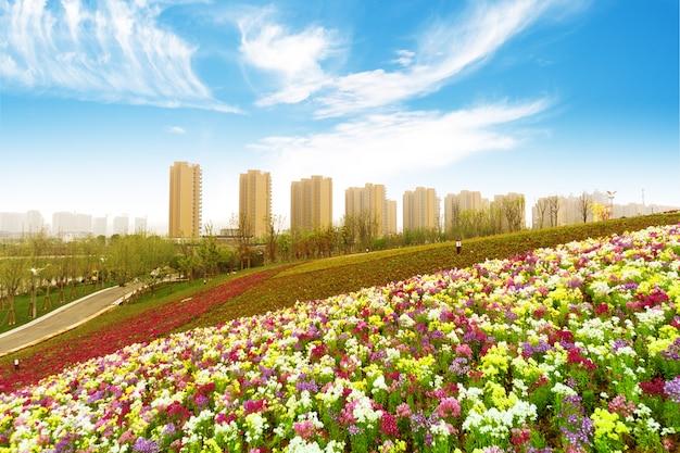 Hangzhou, zhejiang, china, freizeit- und hochhäuser der öffentlichkeit. Premium Fotos