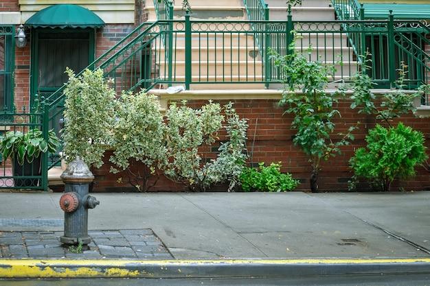 Harlem street. hydranten-, tür- und haustreppe. nyc, usa Premium Fotos