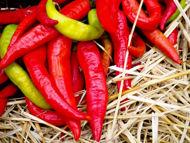 Haufen von reifen großen roten pfeffern am straßenmarkt, reifer roter, grüner paprika, herbsternte Premium Fotos