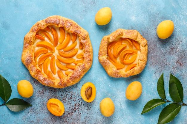 Hausgemachte rustikale aprikosen-galette mit frischen bio-aprikosenfrüchten Kostenlose Fotos