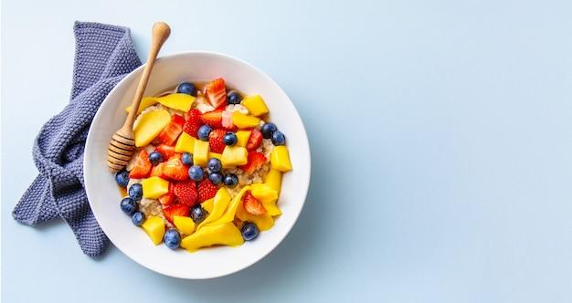 Hausgemachter brei mit früchten und beeren Premium Fotos
