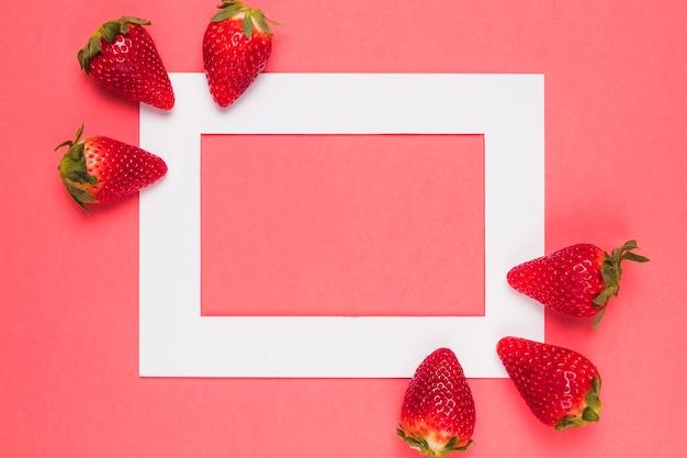 Helle saftige erdbeeren auf weißem rahmen auf einem rosa hintergrund Kostenlose Fotos