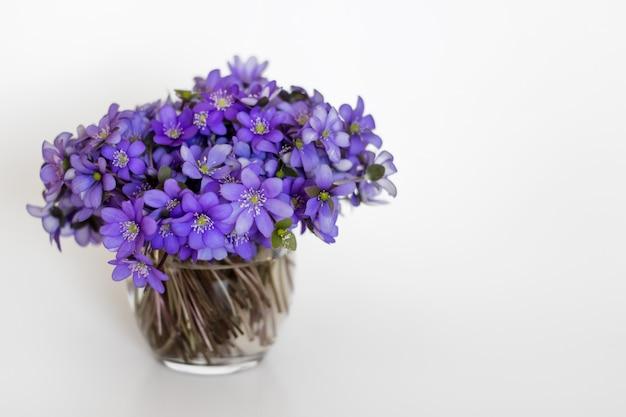 Hepatica lila blüten in einer kleinen glasvase Premium Fotos