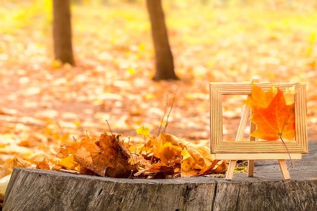 Herbst hintergrund konzept. ahornblätter auf baumschnitt. Premium Fotos