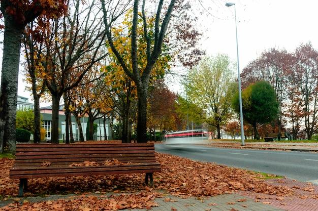 Herbst in lugo Premium Fotos