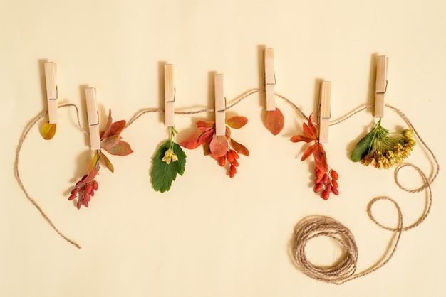 Herbst treibt in einer wäscheleine blätter, die durch wäscheklammern über türkisholz gehalten wird Premium Fotos