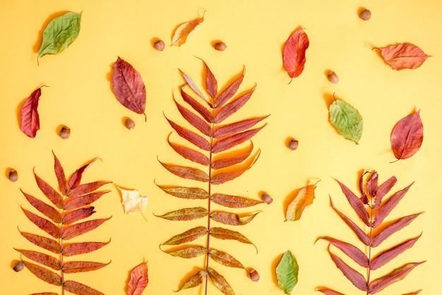Herbst zusammensetzung. muster gemacht vom goldenen blatthintergrund des herbstes. flache lage, draufsicht, copyspace Premium Fotos