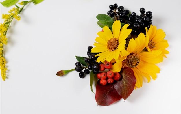Herbstgrenze. zusammensetzung des vibrierenden rotes und des gelbs verlässt auf einem weißen hintergrund. Premium Fotos