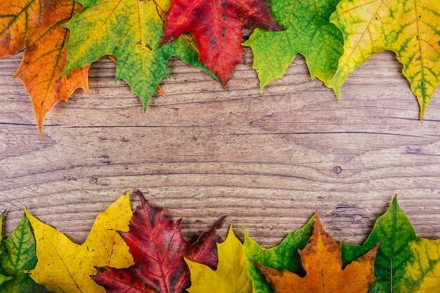 Herbsthintergrund mit bunten fallahornblättern auf rustikalem holztisch Premium Fotos