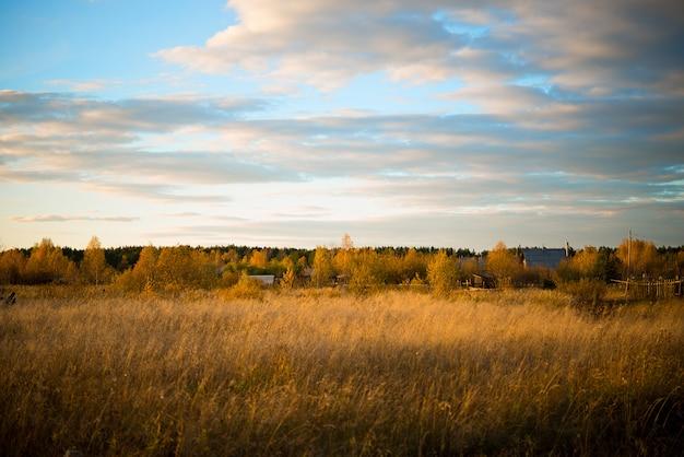 Herbstlandschaft in einem feld mit vergilbtem gras am abend, russland, ural, september Premium Fotos