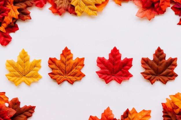 Herbstlaub, der innere blattgrenze legt Kostenlose Fotos