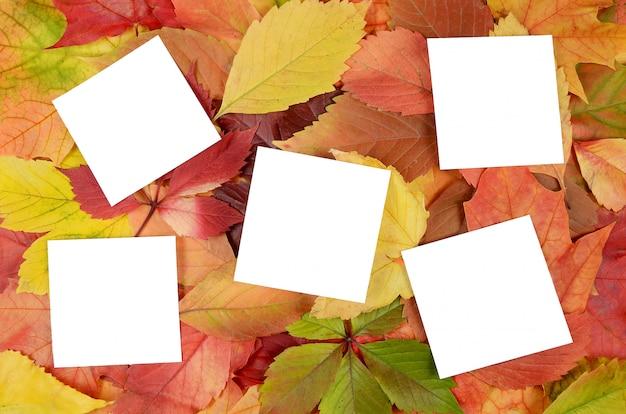 Herbstlaub und blatt papier Premium Fotos