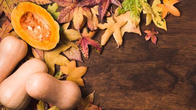 Herbstlaub und butterkürbis kopieren raum Kostenlose Fotos