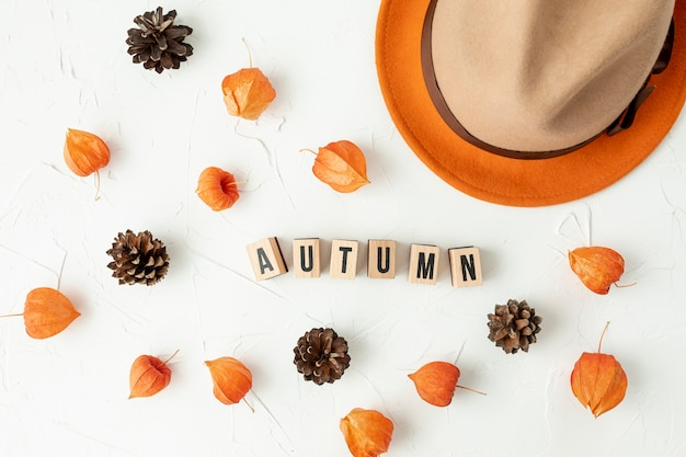 Herbstliche anordnung der draufsicht mit kiefernkegeln Kostenlose Fotos