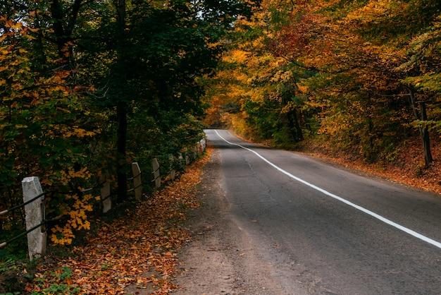 Herbstliche straßenlandschaft Premium Fotos