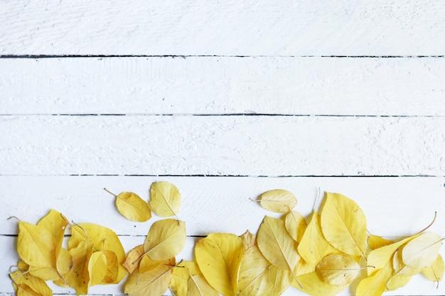 Herbstplan-zusammensetzungsrahmen von trockenen blättern auf weiß Premium Fotos