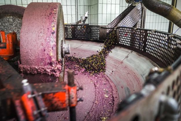 Herstellung von olivenöl Premium Fotos