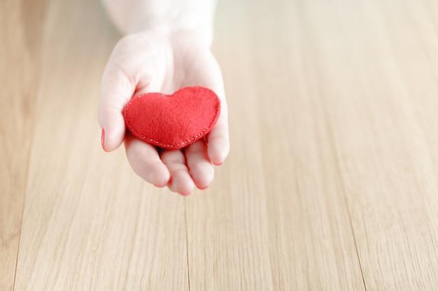 Herz in händen, frau hält handgemachtes genähtes stofftier Premium Fotos